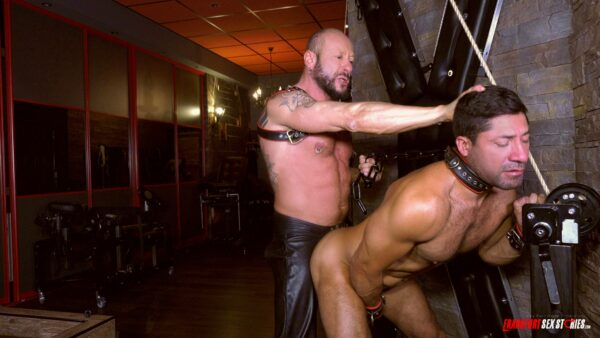 muscled stud with collar strap gets doggy by mature leather man